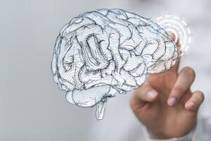 QEEG Brainmapping in Northeim